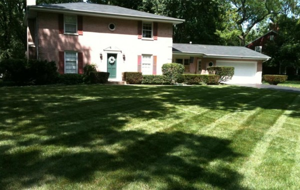 lawn-care-mowing-hedge-trimming-fertilization-grass-landscape