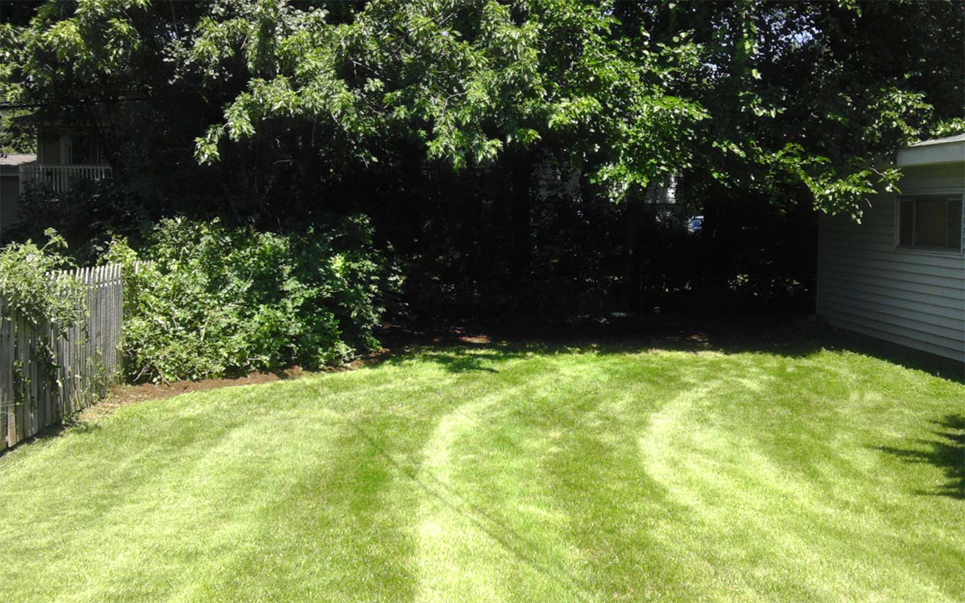 Landscaping Photo Gallery Local Lawn Care & Landscaping