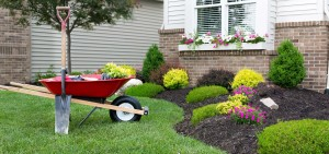 Landscaping-home-residential-grass-lawn-mulch-cleanup