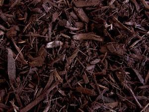 Auburn-mulch