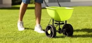 Lawn-fertilizing-Fertilize-grass